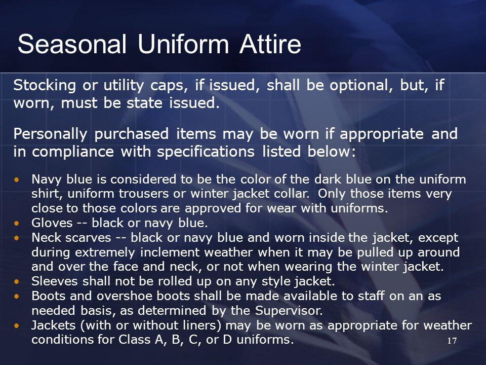 17 Stocking or utility caps, if issued, shall be optional, but, if worn, must be state issued.