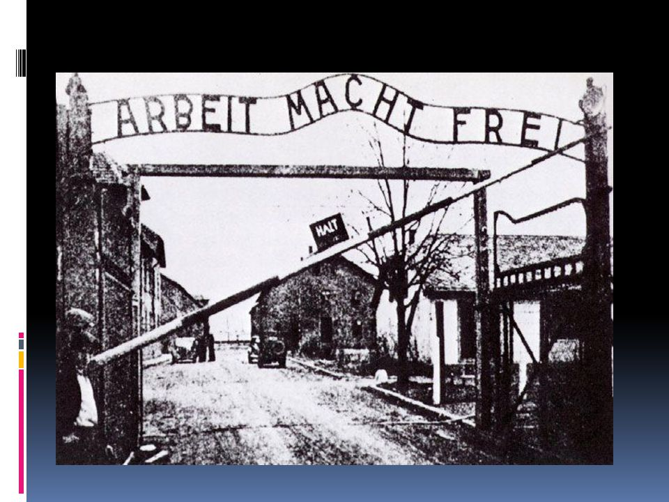 "Bell RInger: Fri. 2/24 QuestionAnswer When Elie arrives at Aushwitz, he enters through gates that read ""Work is Liberty"". Explain the irony in that st"