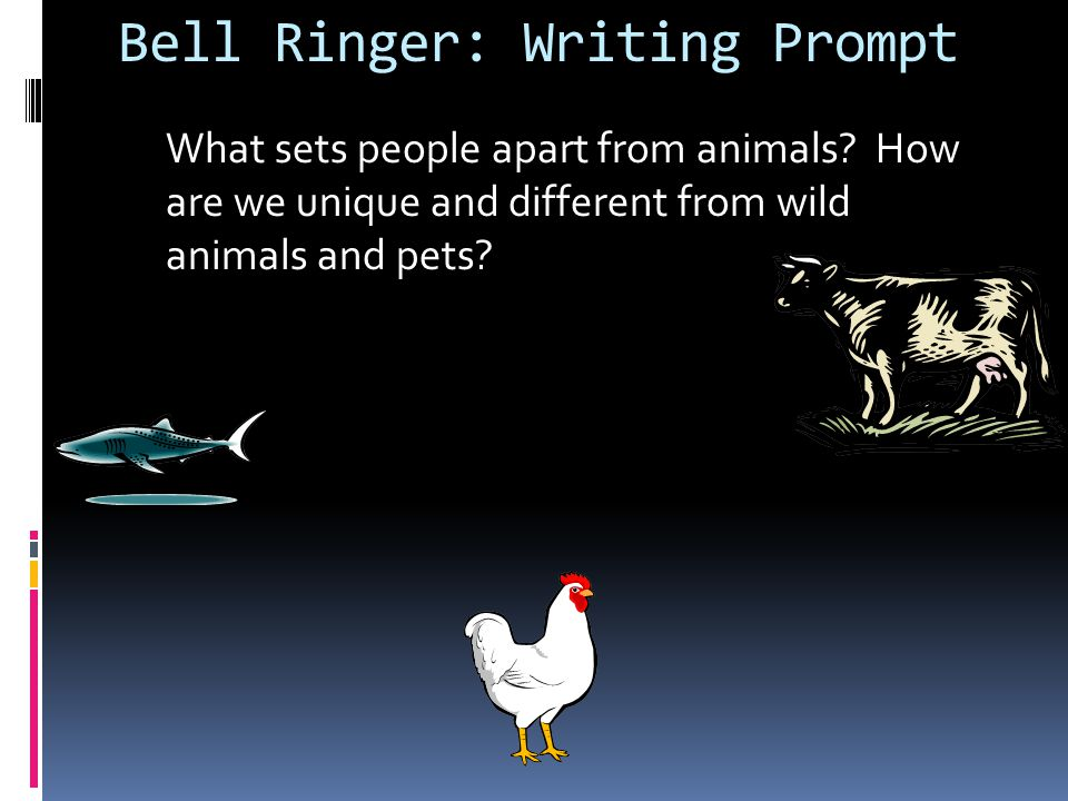 Bell Ringer: Wed.4/17 Write out the sentences.