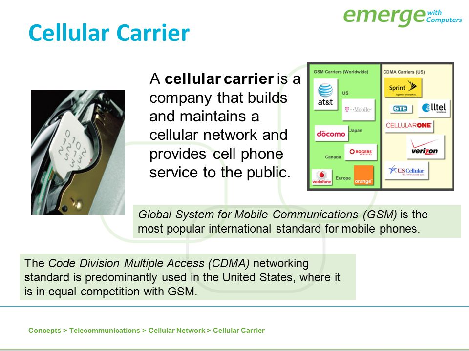 Cellular Carrier A cellular carrier is a company that builds and maintains a cellular network and provides cell phone service to the public. Concepts
