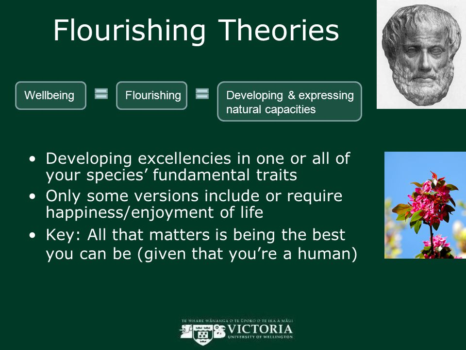 Flourishing Theories Developing excellencies in one or all of your species' fundamental traits Only some versions include or require happiness/enjoyment of life Key: All that matters is being the best you can be (given that you're a human) WellbeingFlourishingDeveloping & expressing natural capacities