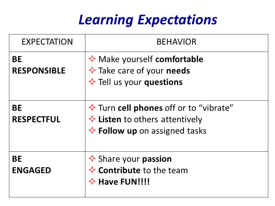 Learning Expectations EXPECTATIONBEHAVIOR BE RESPONSIBLE  Make yourself comfortable  Take care of your needs  Tell us your questions BE RESPECTFUL  Turn cell phones off or to vibrate  Listen to others attentively  Follow up on assigned tasks BE ENGAGED  Share your passion  Contribute to the team  Have FUN!!!!
