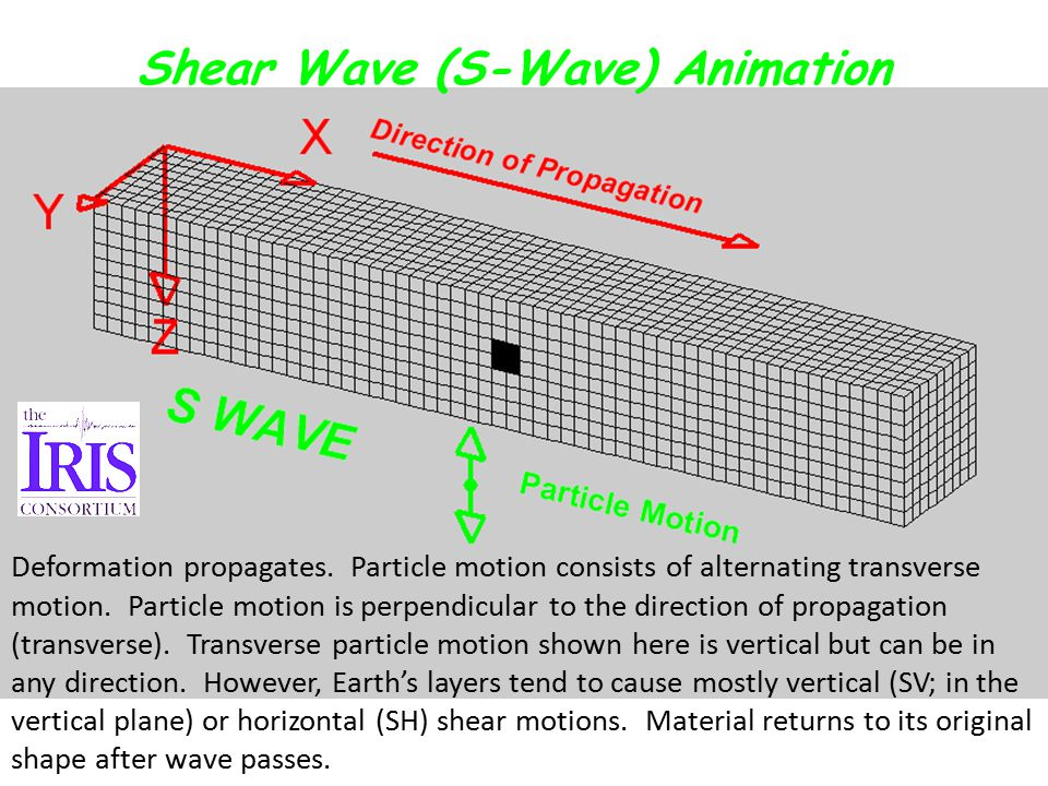 Shear Wave (S-Wave) Animation Deformation propagates.