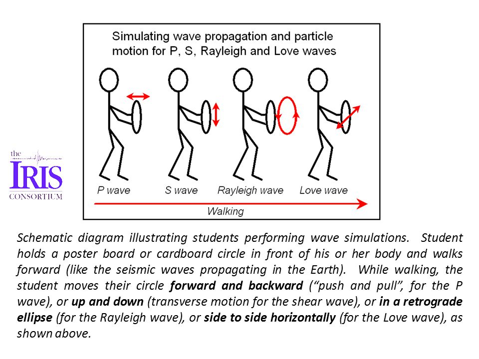 Schematic diagram illustrating students performing wave simulations.