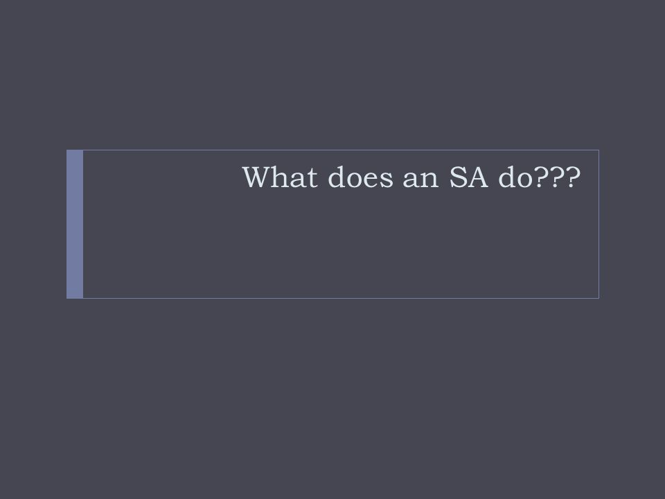 What does an SA do