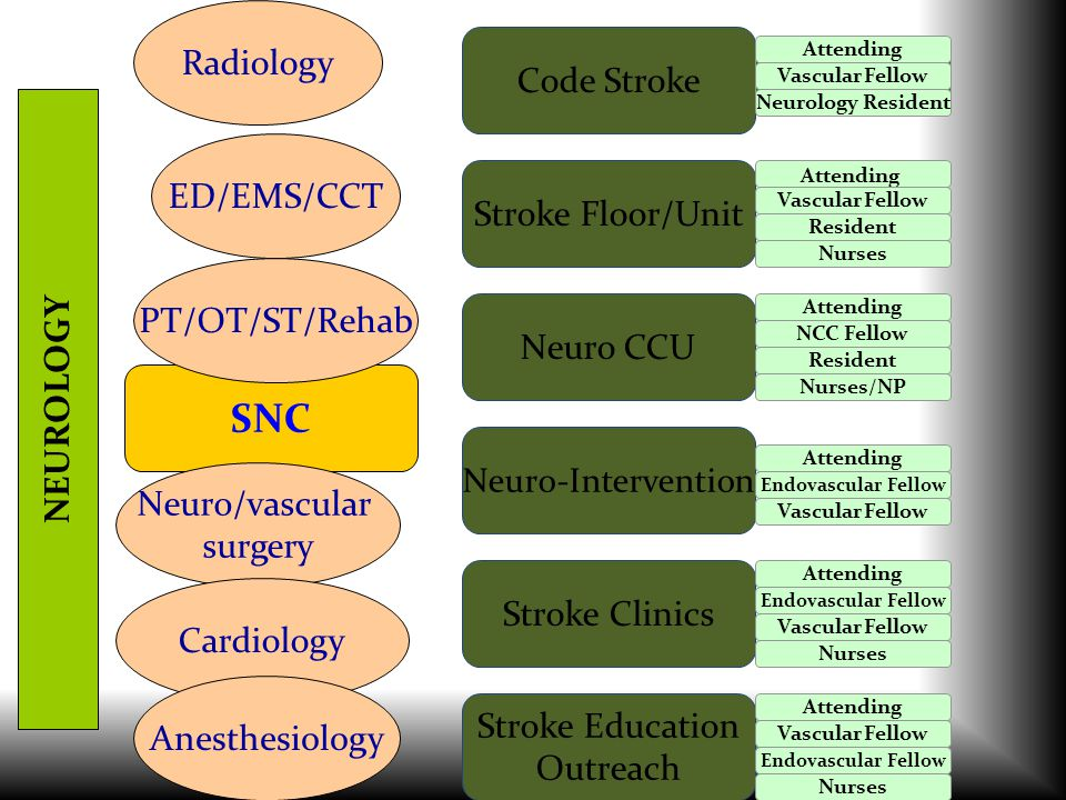SNC Neuro-Intervention Neuro CCU Stroke Floor/Unit Stroke Clinics Stroke Education Outreach Code Stroke NEUROLOGY Radiology ED/EMS/CCT Neuro/vascular