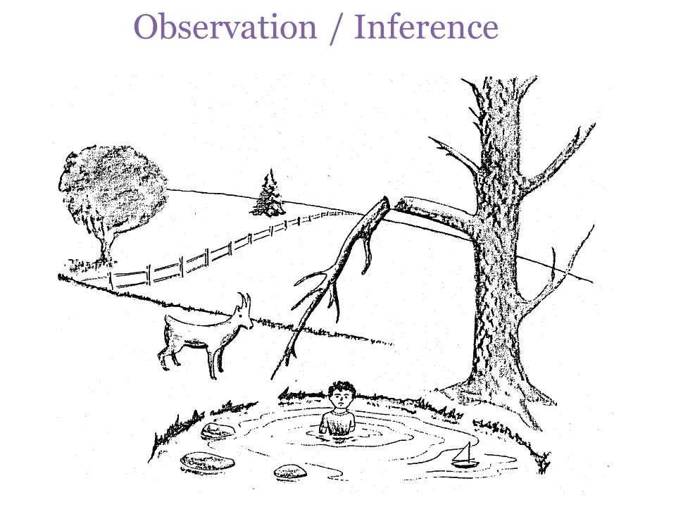 Observation / Inference