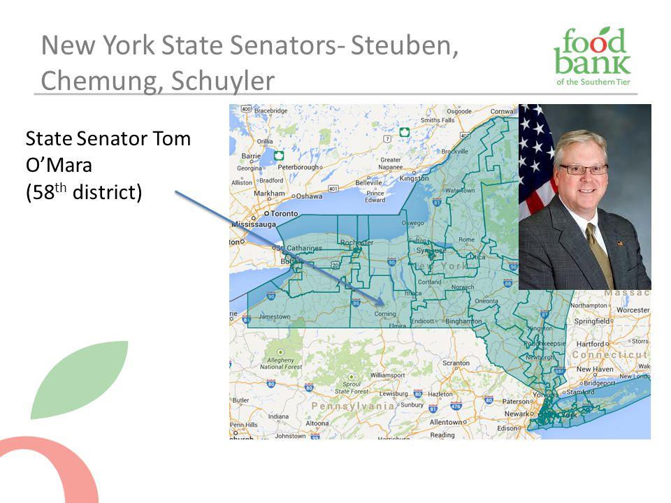 New York State Senators- Steuben, Chemung, Schuyler State Senator Tom O'Mara (58 th district)