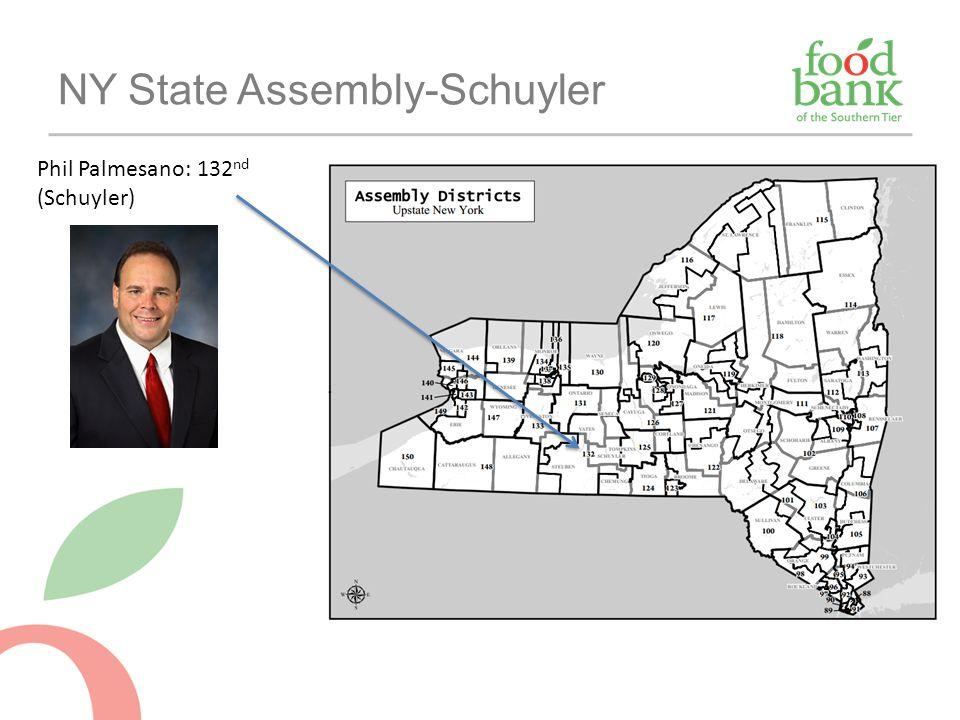 NY State Assembly-Schuyler Phil Palmesano: 132 nd (Schuyler)