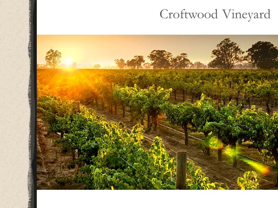 Croftwood Vineyard