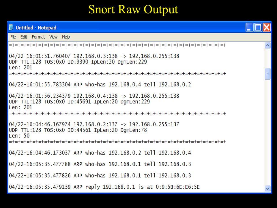 Snort Raw Output