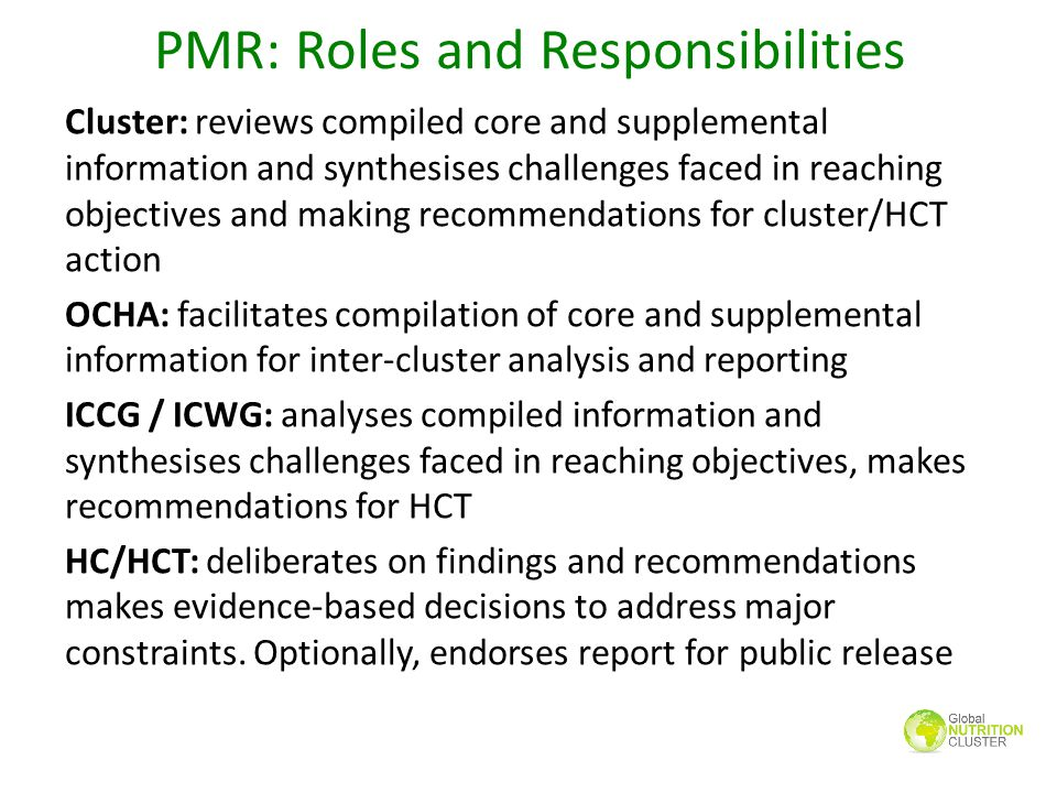 PMR: Roles and Responsibilities Cluster: reviews compiled core and supplemental information and synthesises challenges faced in reaching objectives an