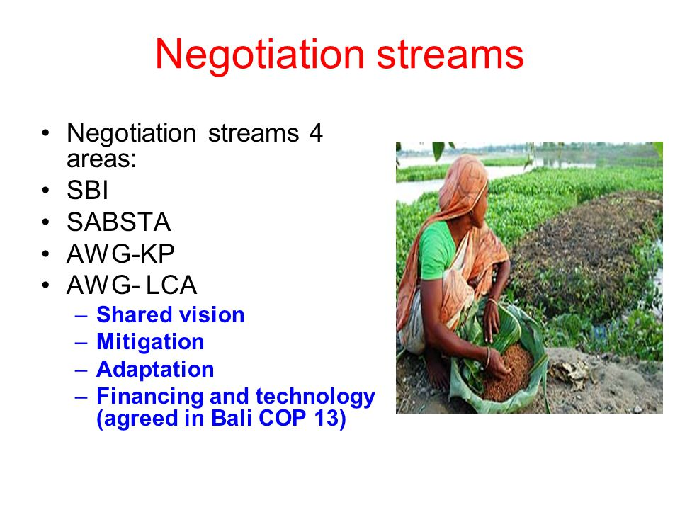 Negotiation streams Negotiation streams 4 areas: SBI SABSTA AWG-KP AWG- LCA –Shared vision –Mitigation –Adaptation –Financing and technology (agreed in Bali COP 13)