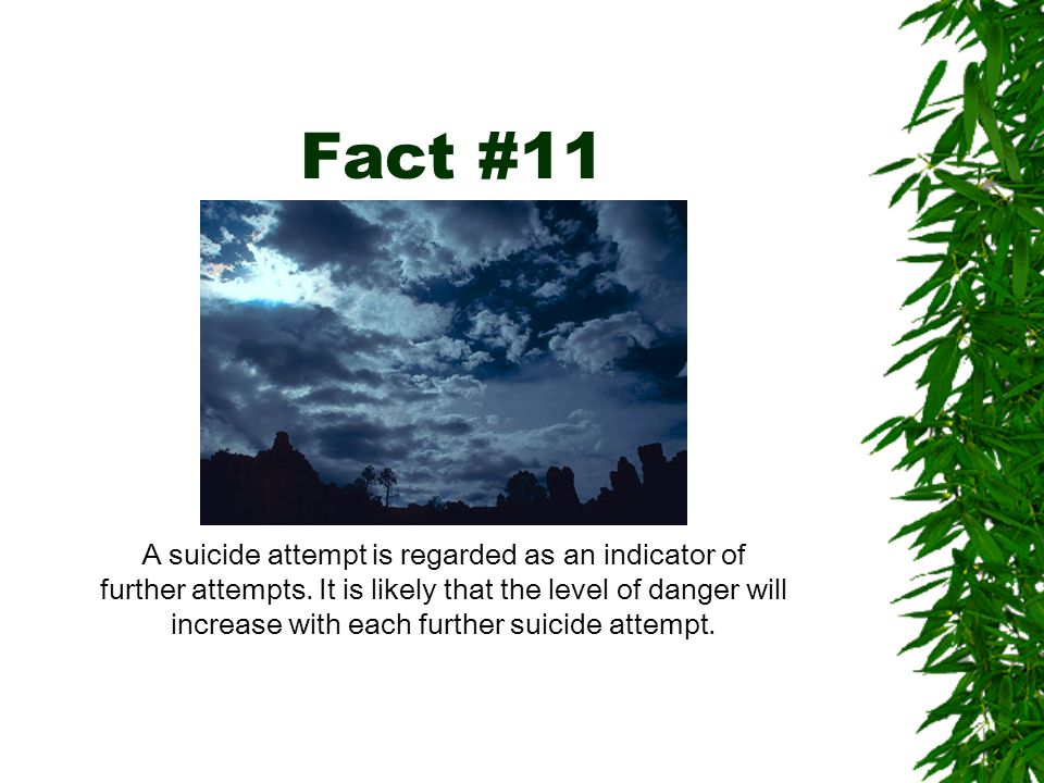 Fact #11 A suicide attempt is regarded as an indicator of further attempts.