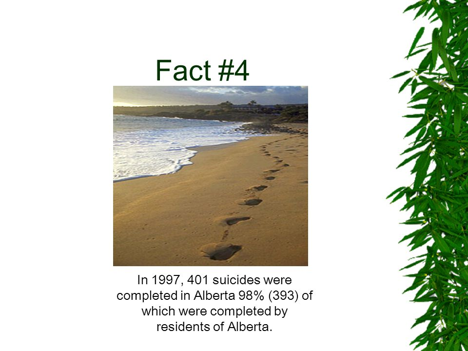 Fact #4 In 1997, 401 suicides were completed in Alberta 98% (393) of which were completed by residents of Alberta.