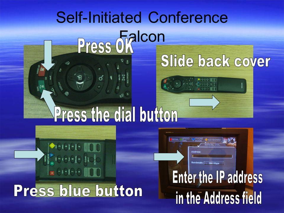 Self-Initiated Conference Falcon