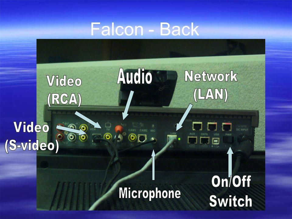 Falcon - Back