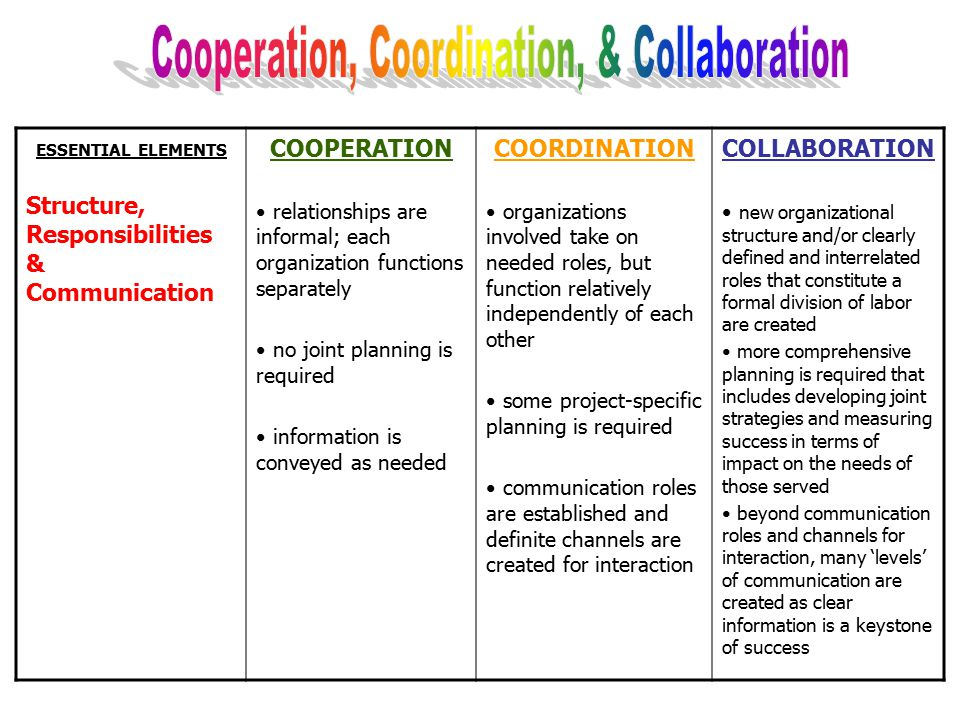 ESSENTIAL ELEMENTS Vision and Relationships COOPERATION basis for cooperation is usually between individuals but may be mandated by a third party orga