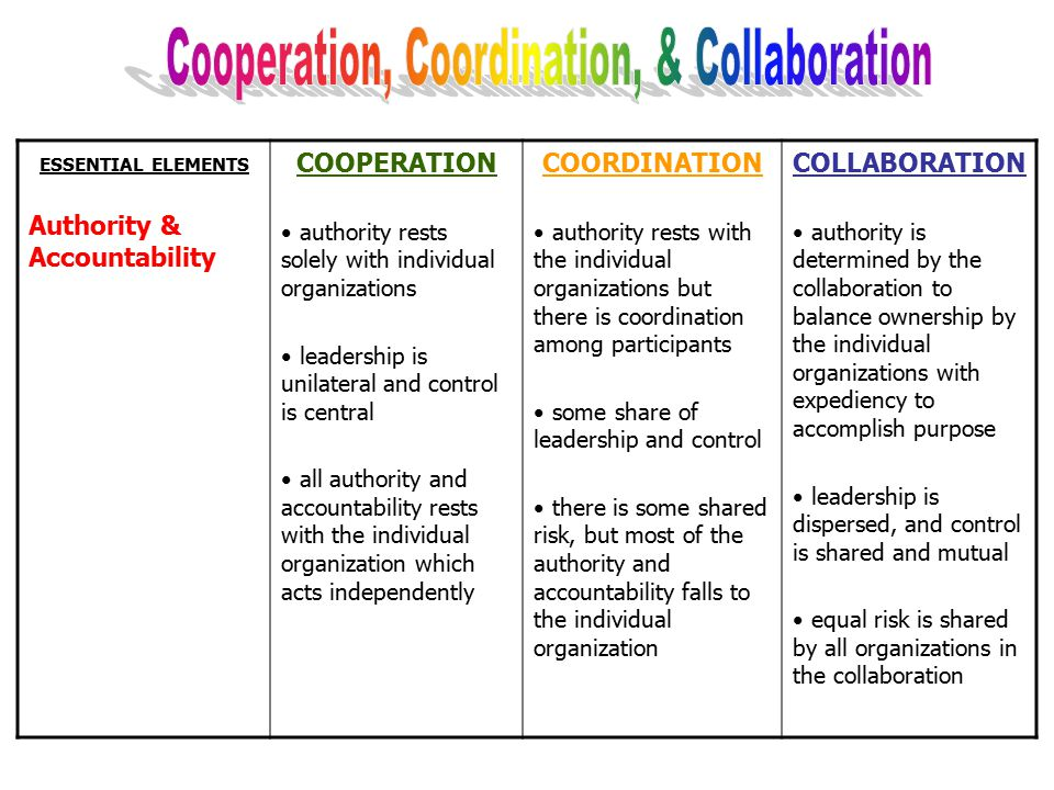 ESSENTIAL ELEMENTS Structure, Responsibilities & Communication COOPERATION relationships are informal; each organization functions separately no joint