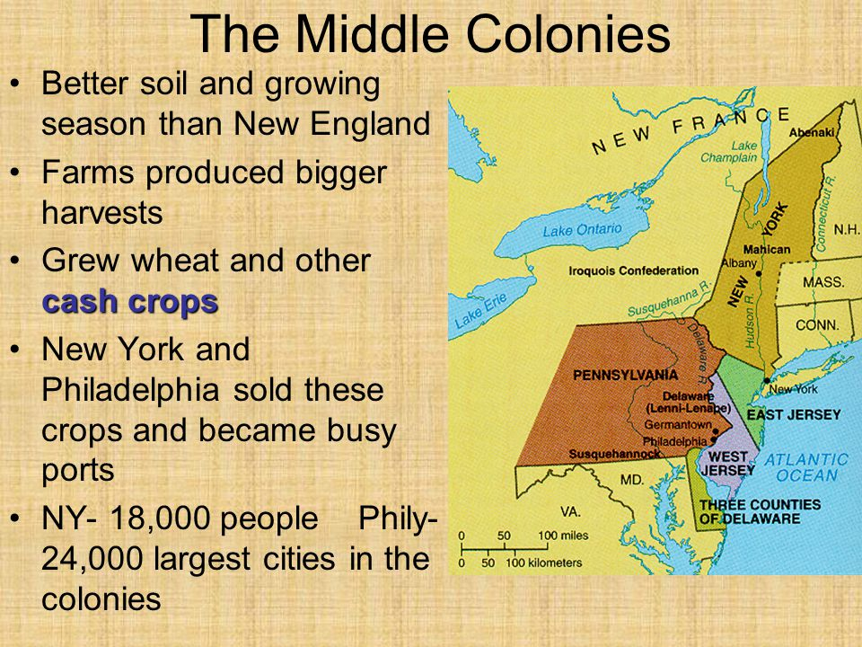 The Middle Colonies Better soil and growing season than New England Farms produced bigger harvests cash cropsGrew wheat and other cash crops New York