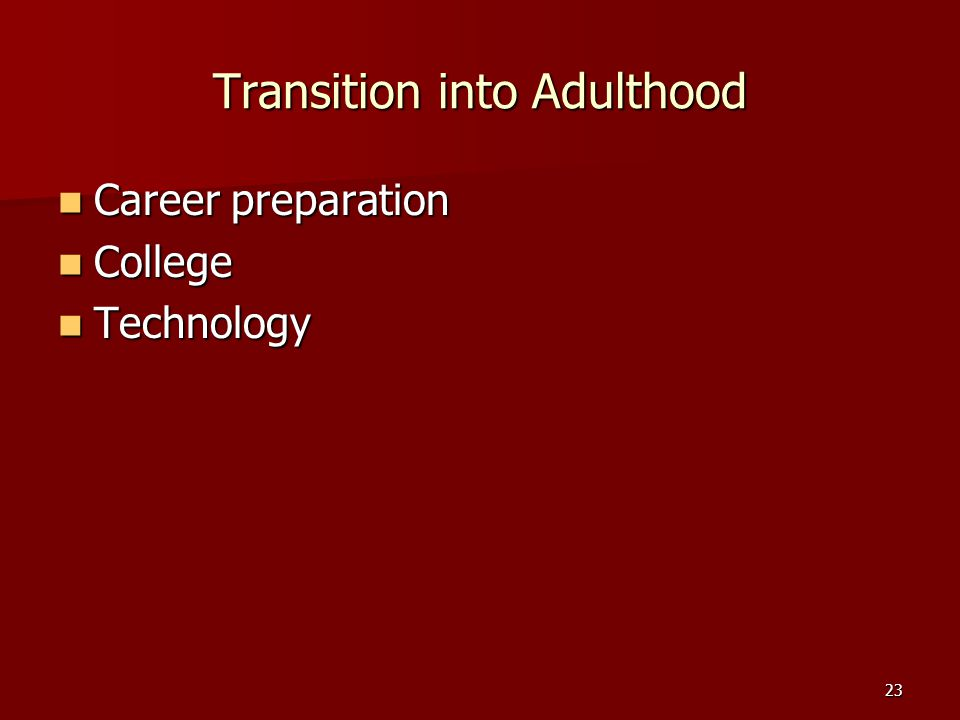 23 Transition into Adulthood Career preparation Career preparation College College Technology Technology