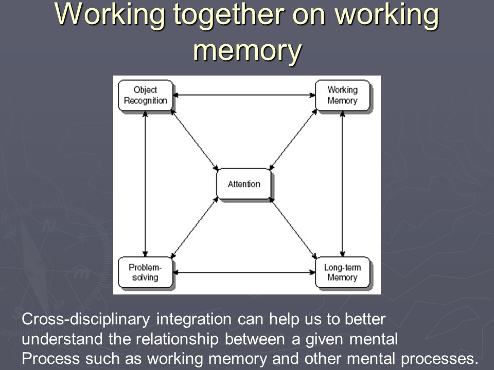 Working together on working memory Cross-disciplinary integration can help us to better understand the relationship between a given mental Process such as working memory and other mental processes.