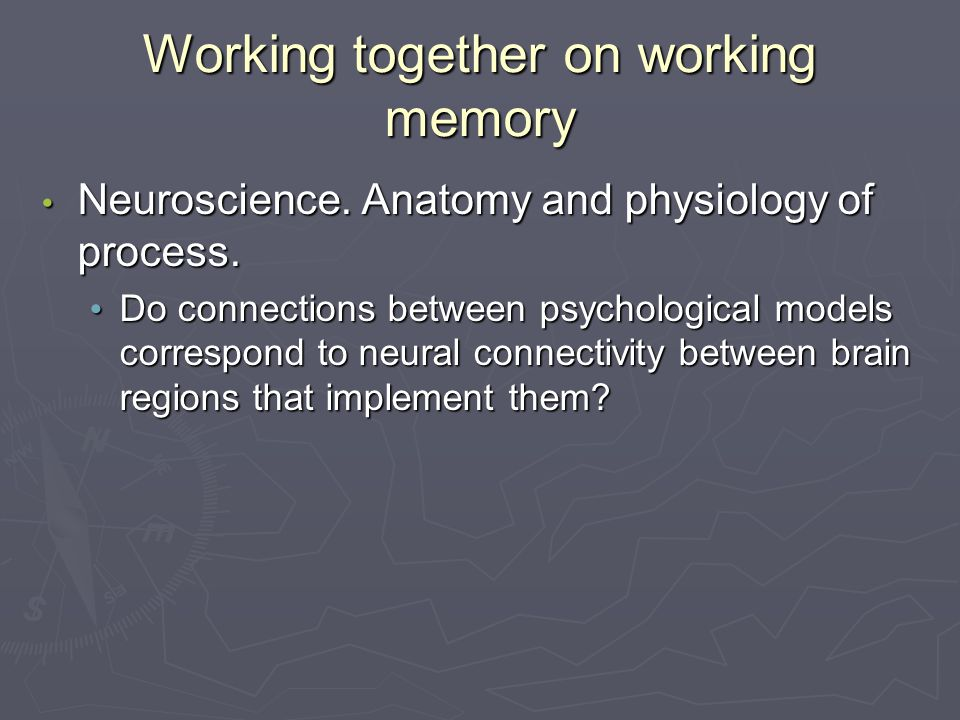 Working together on working memory Neuroscience. Anatomy and physiology of process.