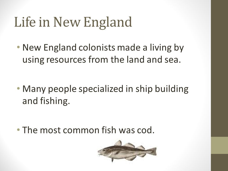 Life in New England New England colonists made a living by using resources from the land and sea. Many people specialized in ship building and fishing