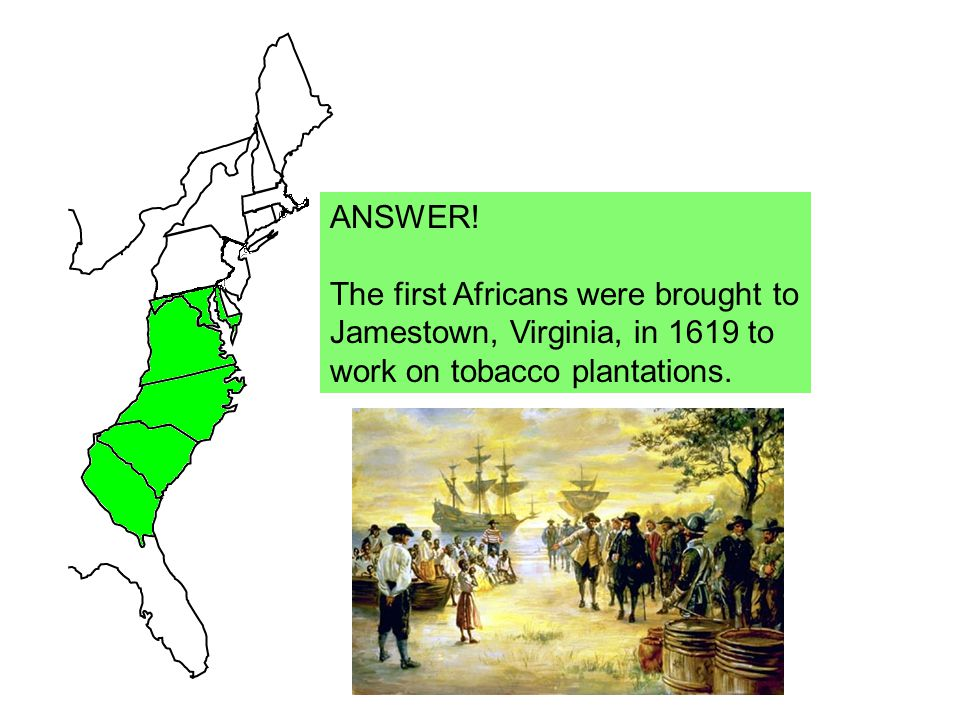 ANSWER! The first Africans were brought to Jamestown, Virginia, in 1619 to work on tobacco plantations.