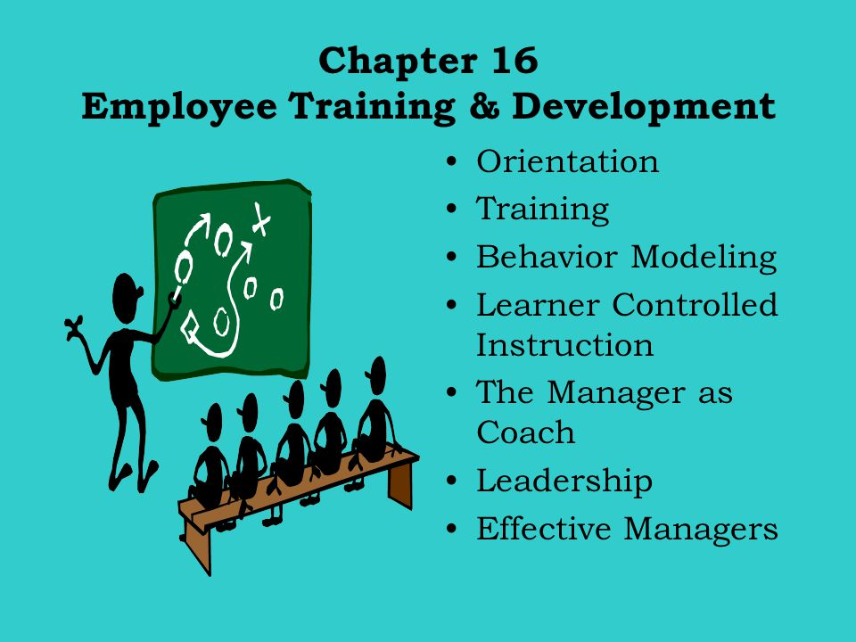 Chapter 16 Employee Training & Development Orientation Training Behavior Modeling Learner Controlled Instruction The Manager as Coach Leadership Effec
