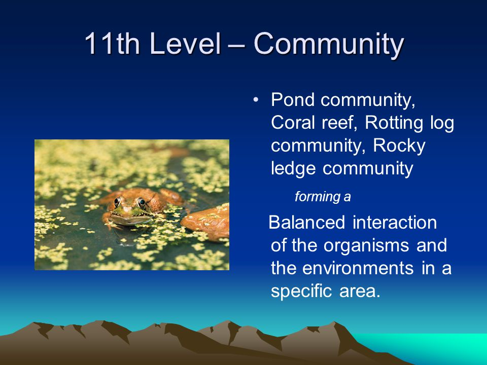 11th Level – Community Pond community, Coral reef, Rotting log community, Rocky ledge community forming a Balanced interaction of the organisms and the environments in a specific area.