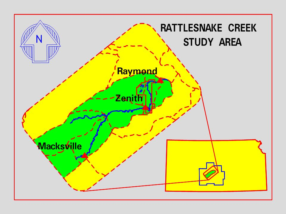 Rattlesnake Creek Study