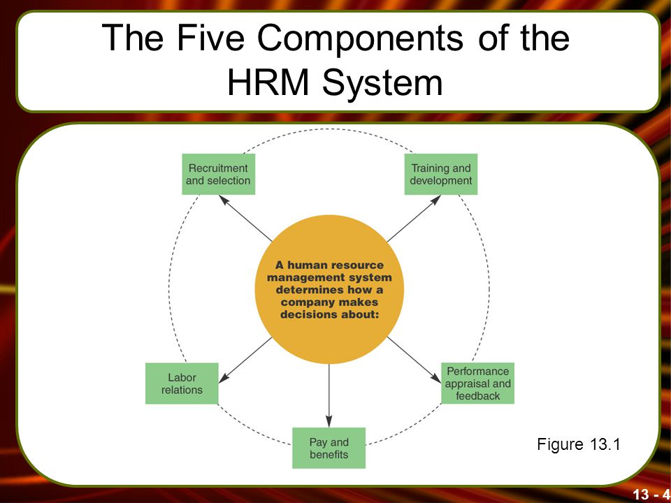 13 - 4 The Five Components of the HRM System Figure 13.1