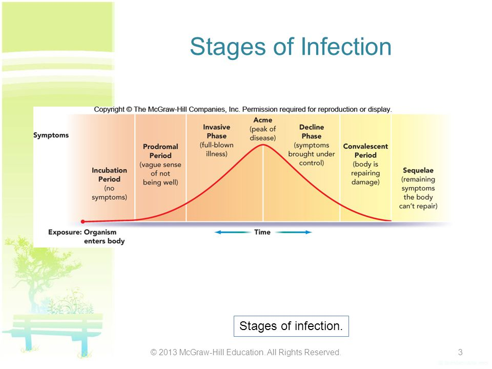 Stages of Infection © 2013 McGraw-Hill Education. All Rights Reserved.3 Stages of infection.