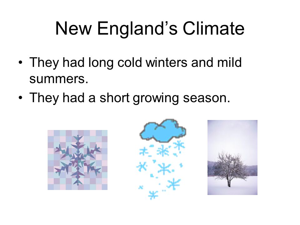 New England's Climate They had long cold winters and mild summers. They had a short growing season.