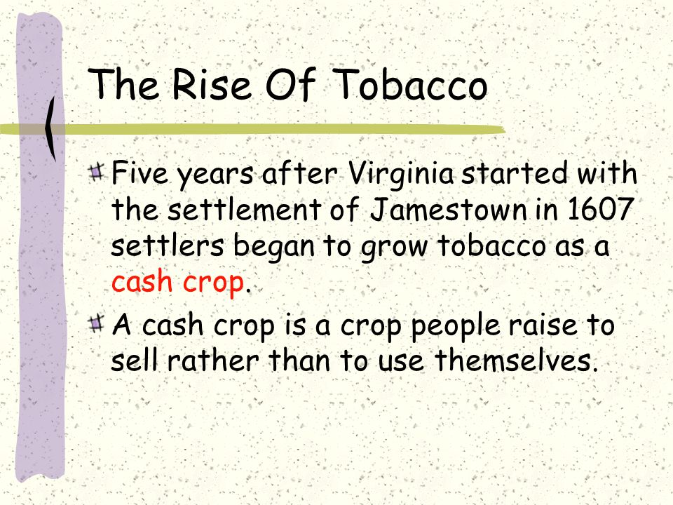 The Rise Of Tobacco Five years after Virginia started with the settlement of Jamestown in 1607 settlers began to grow tobacco as a cash crop.