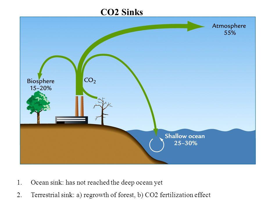 CO2 Sinks 1.Ocean sink: has not reached the deep ocean yet 2.Terrestrial sink: a) regrowth of forest, b) CO2 fertilization effect