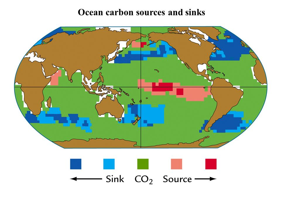 Ocean carbon sources and sinks