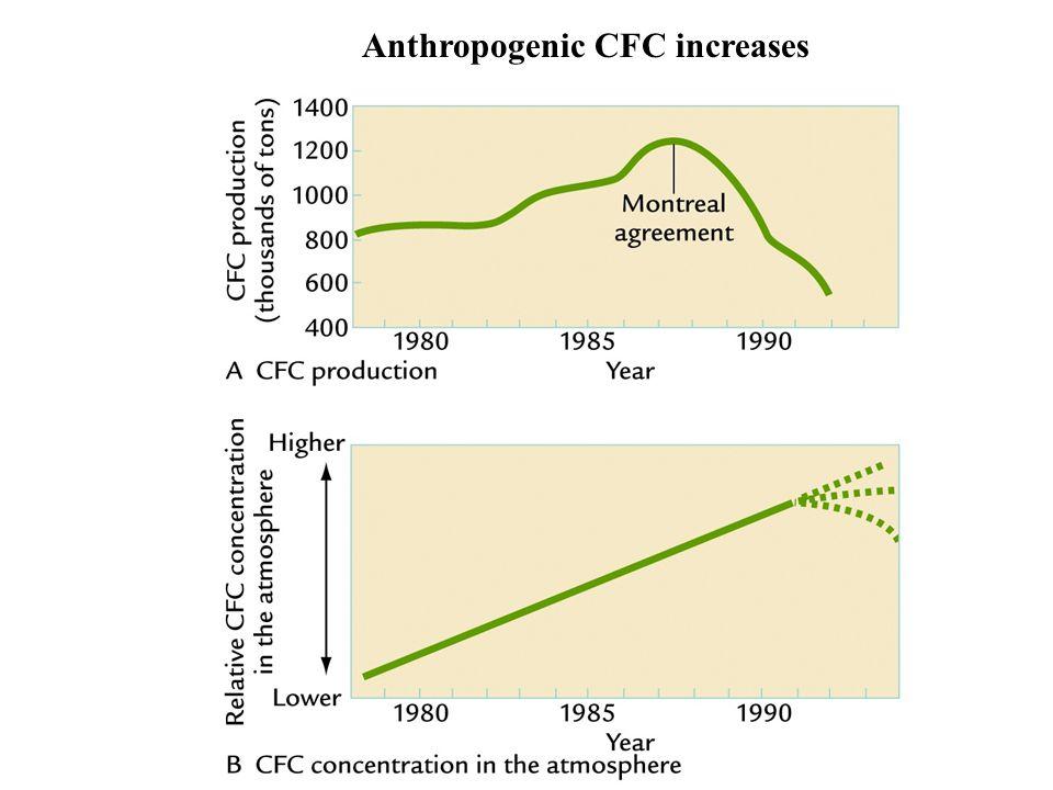 Anthropogenic CFC increases