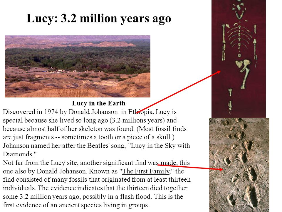 Lucy: 3.2 million years ago Lucy in the Earth Discovered in 1974 by Donald Johanson in Ethiopia, Lucy is special because she lived so long ago (3.2 millions years) and because almost half of her skeleton was found.