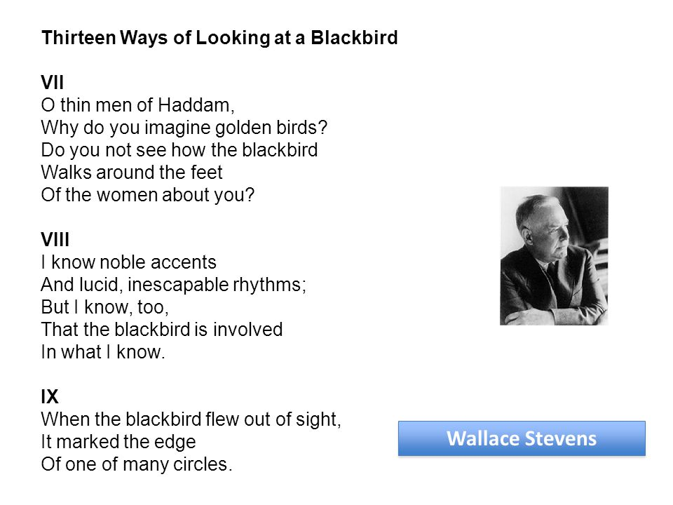Wallace Stevens Thirteen Ways of Looking at a Blackbird VII O thin men of Haddam, Why do you imagine golden birds.
