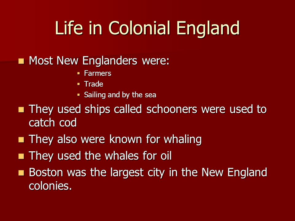 Life in Colonial New England Schooling was very important to New Englanders.