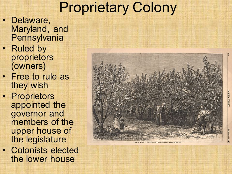 Proprietary Colony Delaware, Maryland, and Pennsylvania Ruled by proprietors (owners) Free to rule as they wish Proprietors appointed the governor and