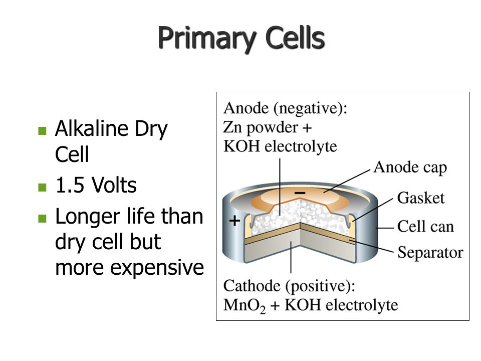 Primary Cells Alkaline Dry Cell Alkaline Dry Cell 1.5 Volts 1.5 Volts Longer life than dry cell but more expensive Longer life than dry cell but more expensive