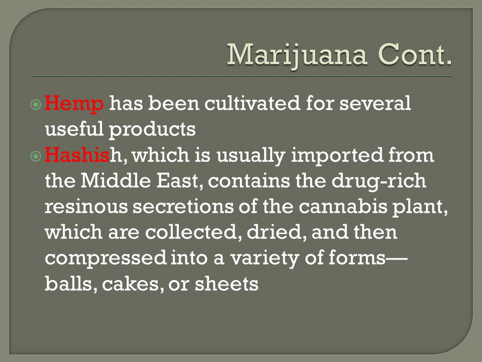  Hemp has been cultivated for several useful products  Hashish, which is usually imported from the Middle East, contains the drug-rich resinous secr
