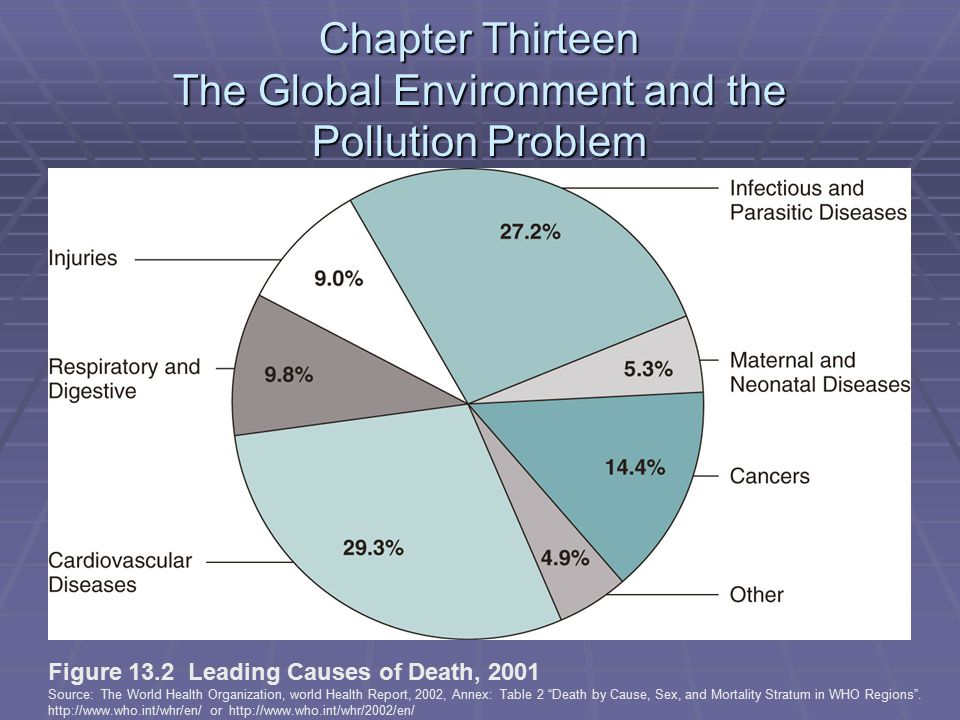 Chapter Thirteen The Global Environment and the Pollution Problem Figure 13.2 Leading Causes of Death, 2001 Source: The World Health Organization, world Health Report, 2002, Annex: Table 2 Death by Cause, Sex, and Mortality Stratum in WHO Regions .