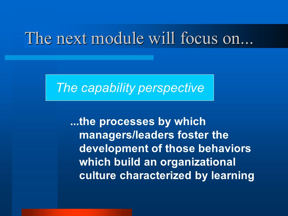 The next module will focus on......the processes by which managers/leaders foster the development of those behaviors which build an organizational culture characterized by learning The capability perspective