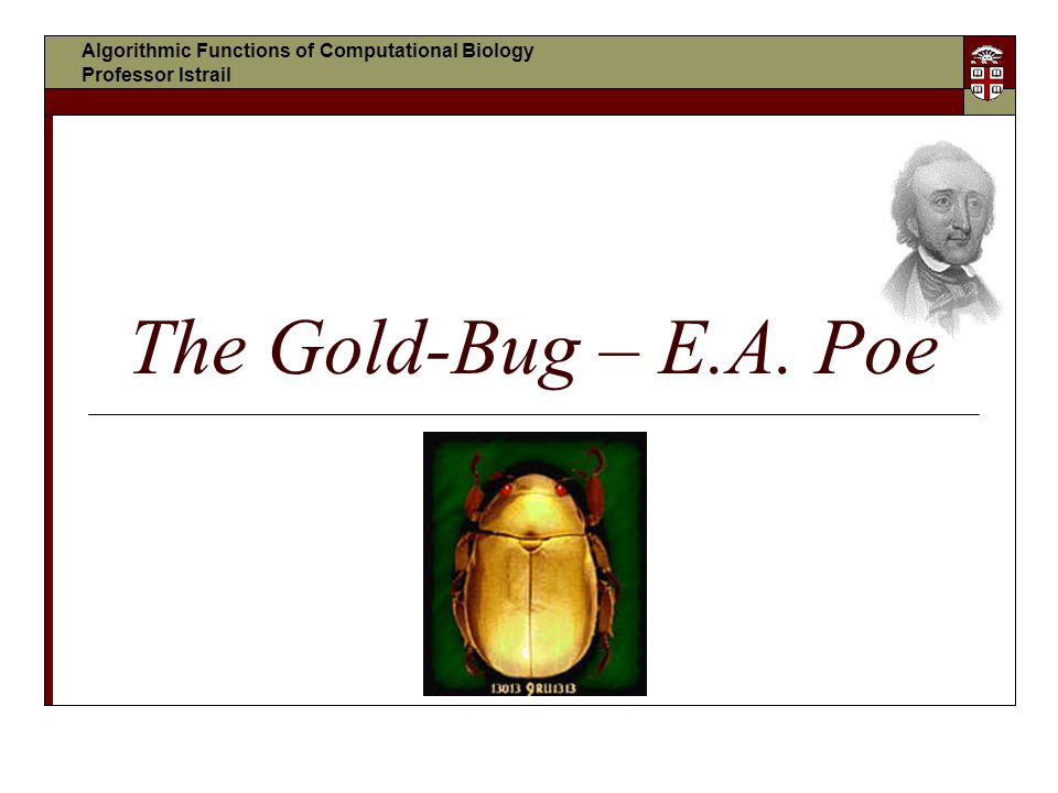 The Gold-Bug – E.A. Poe Algorithmic Functions of Computational Biology Professor Istrail