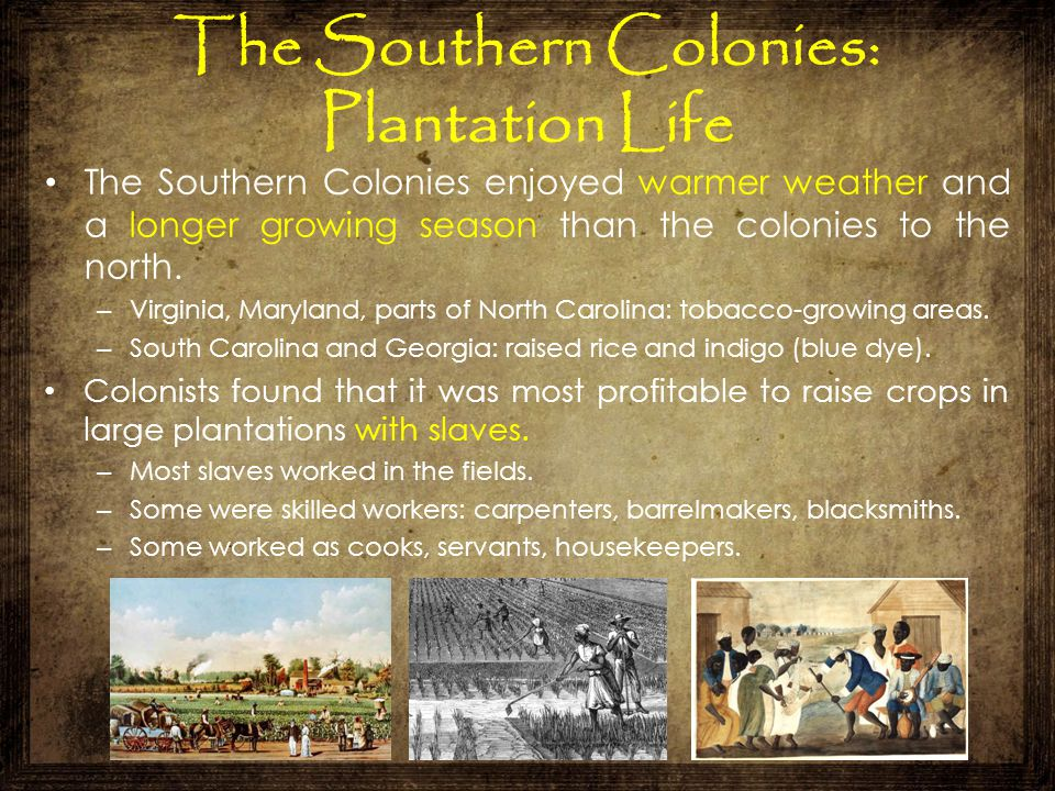 The Southern Colonies: Plantation Life The Southern Colonies enjoyed warmer weather and a longer growing season than the colonies to the north. – Virg