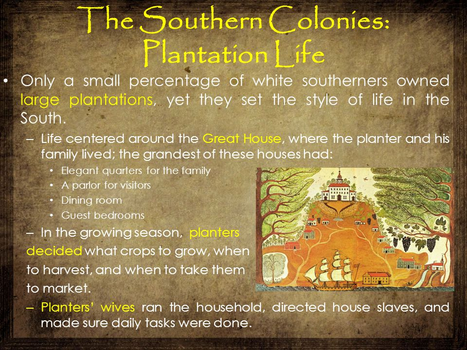 The Southern Colonies: Plantation Life Only a small percentage of white southerners owned large plantations, yet they set the style of life in the Sou